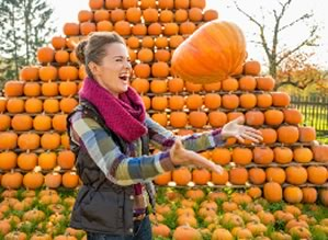 """SILT, Colo. — Because we're now moving into pumpkin season, the town is holding a free """"Punkin Chuckin' contest from 4-7 p.m. on Friday, Oct. 30 at the Stoney Ridge Pavilion."""
