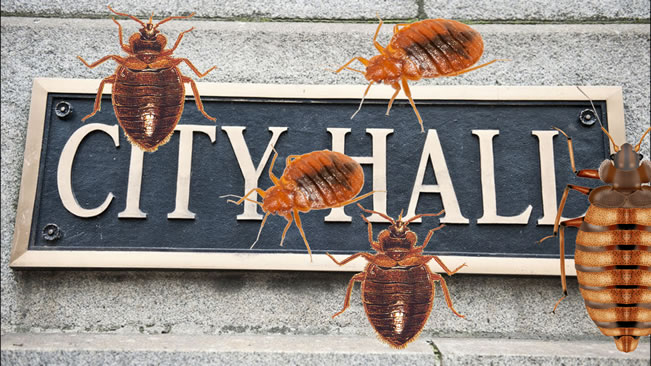 "AUGUSTA, Ga. — ""Sleep tight and don't let the bed bugs bite"" was not a phrase applied to the Augusta City Hall City Hall after an irate man unleashed a cupful of the critters on the counter which he said he found in his apartment."