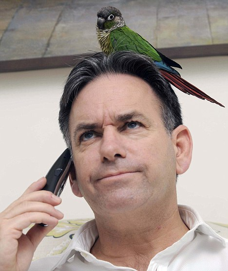 SILT, Colo. — Police were called out to investigate a report of a man heatedly arguing with a parrot, according to Silt police reports.